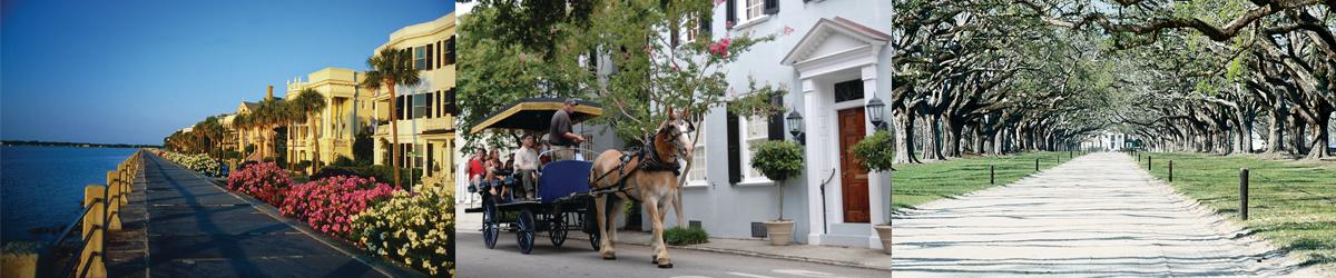 Charleston Student Extended Travel Tours Bannner 1